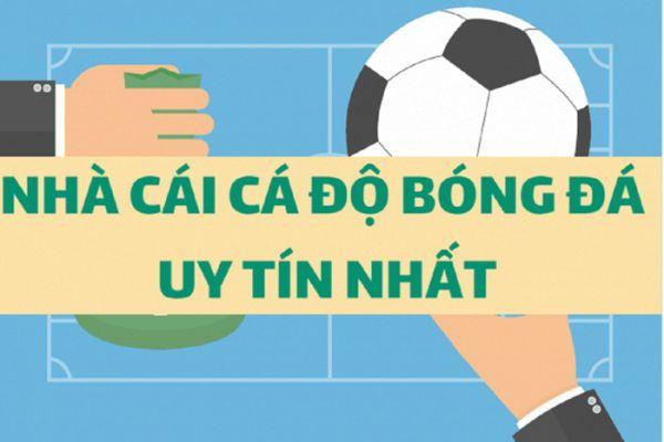 kham-pha-cac-web-ca-do-bong-da-uy-tin-tai-cadobongda.club